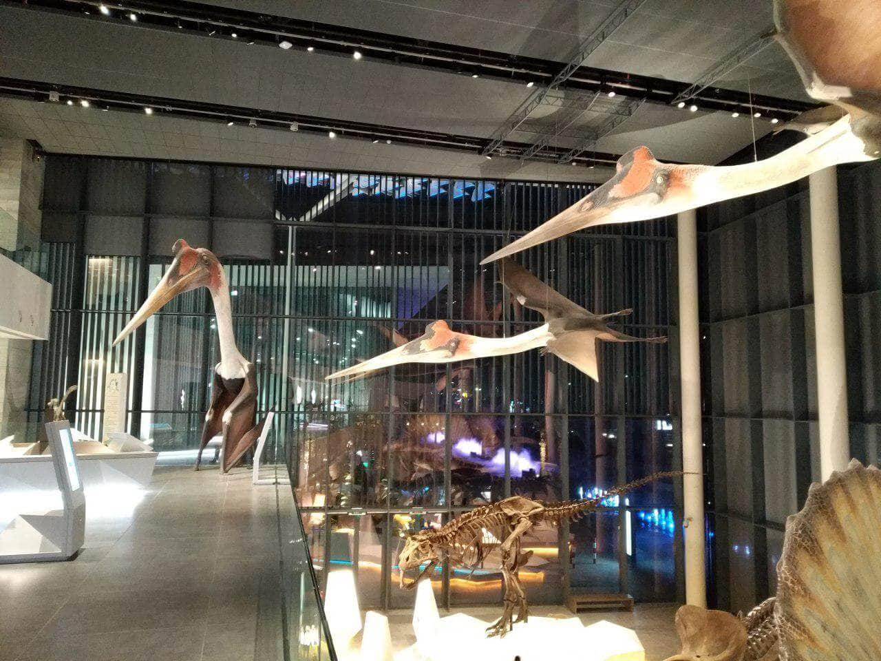 IT Svit business trip to Kuwait: museum